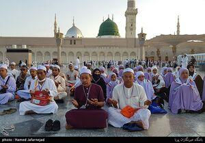 فیلم/ میهمانی رنگ ها در مسجد النبی(ص)