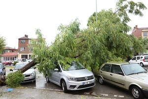 عکس/ خسارت شدید طوفان در شمال ترکیه