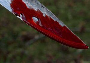 پسر ۱۶ ساله با چاقو مرد ۳۵ ساله را از پای درآورد