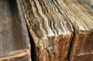 اسناد به جامانده از آیتالله کاشانی در آتش سوخت