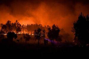 آتش سوزی گسترده در مناطق مرکزی پرتغال