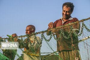 عکس/ آمادگی صیادان بوشهری برای صید میگو