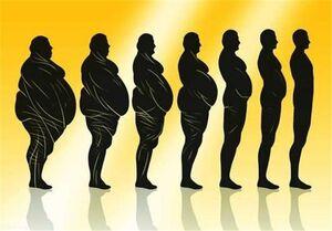 اضافه وزن مغز شما را پیر میکند!