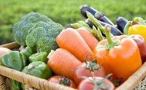 گیاهخواری روشی مناسب برای درمان کبد چرب