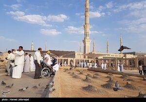 عکس/ زیارت جانبازان از مسجدالنبی و قبرستان بقیع