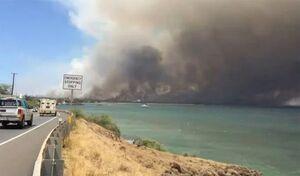 آتش سوزی گسترده در سواحل مدیترانه