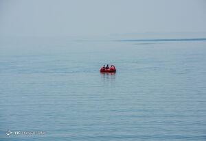 فیلم/ روزهای خوب دریاچه ارومیه