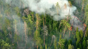 عکس/ ادامه آتش سوزیها در سیبری
