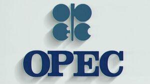 کاهش تولید نفت اوپک پیش از عرضه اولیه آرامکو