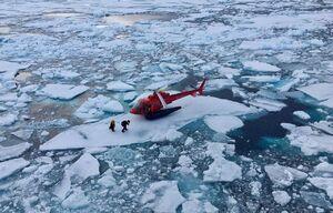 عکس/ فرود هلیکوپتر بر روی یک تکه یخ
