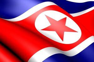 کرهشمالی: قطعنامههای شورایامنیت را نمیپذیریم