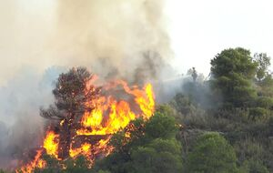 آتش سوزی صدها هکتار از مناطق جنگلی اسپانیا