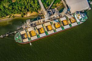 کشتی تجاری صادرات کشاورزی