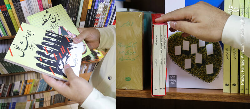 نادر ابراهیمی از نویسندگانی است که مثل محمود گلابدرهیی پیش از انقلاب شروع به نوشتن کرد و همان زمان هم آثار ستمستیز داشت. پس از انقلاب هم با آثاری چون سه دیدار، با سرودخوان جنگ در خطه نام و ننگ، آتش بدون دود، مجموعه قصههای انقلاب برای کودکان و ... کنار مردم و انقلابشان ماند. نادر کنار نویسندگی و برجانهادن دهها اثر، تجربه زیستی زیادی داشت که در ابوالمشاغل و ابن مشغله منعکس است.