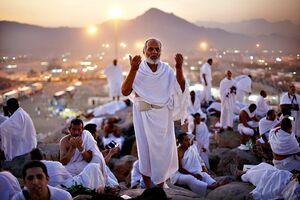 نگاهی به حکمتهای اعمال زائران بیت الله