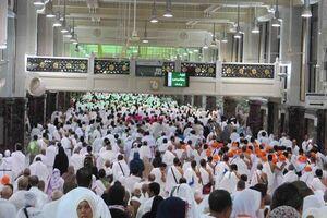 حج؛ عبادتی پر رمز و راز/ نگاهی به حکمتهای اعمال زائران بیت الله