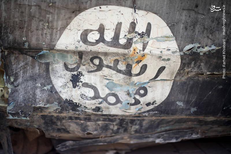 فیلم/ ماجرای دختر ۹ سالهای که به عقد داعشیها درآمد