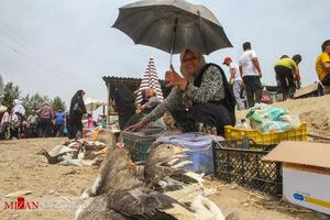 عکس/ جمعه بازار باصفای جویبار
