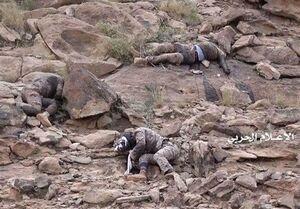 تصاویری از اجساد مزدوران سعودی