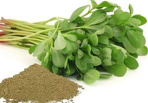 """درمان """"۹۹ نوع درد"""" با مصرف این نوع سبزی"""