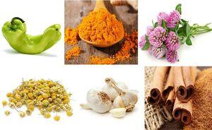 گیاهان دارویی نمایه