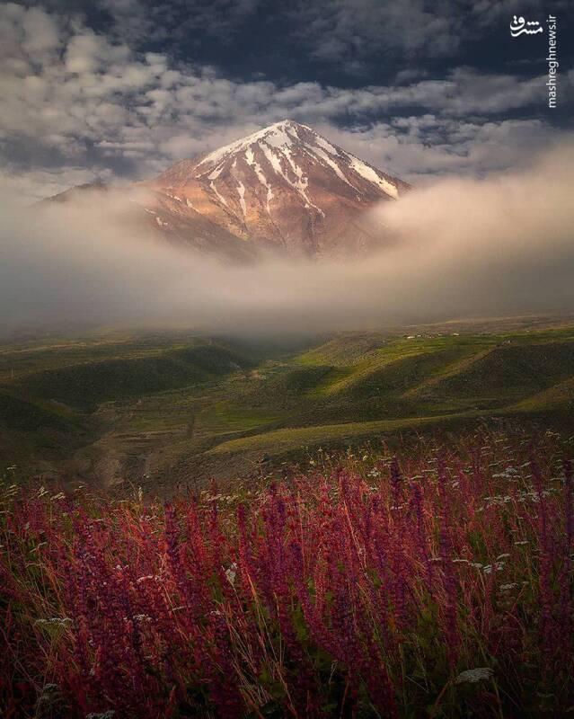 عکس: نیما عمران