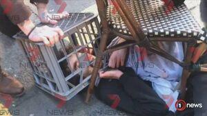 حمله مسلحانه به عابران پیاده در سیدنی