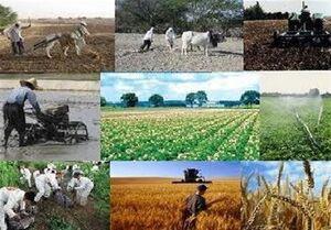 عواقب انتقال وظایف بازرگانی کشاورزی به وزارت صمت +جدول