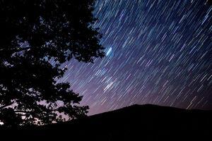عکس/ بارش ستاره در آسمان
