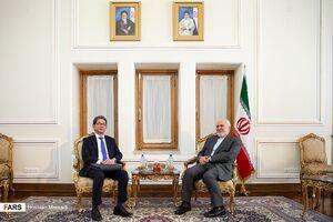دیدار معاون وزیر خارجه ژاپن با ظریف
