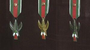 نشان نظامی فتح سردار