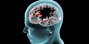 چه عواملی که باعث جلوگیری از «آلزایمر» می شوند؟