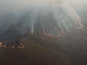 عکس/ آتش سوزی در جنگلهای آمازون