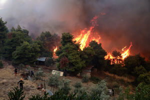 عکس/ جنگلهای یونان در آتش سوخت