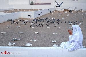 عکس/ قبرستان ابوطالب در مکه مکرمه
