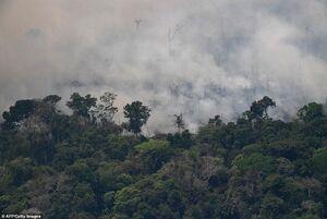 جدیدترین تصاویر از آتشسوزی آمازون