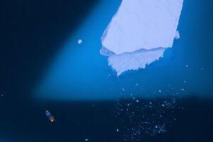 عکس/ عبور یک قایق از کنار کوه یخ