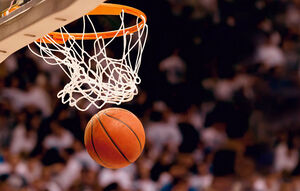 بسکتبال نمایه