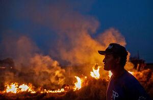 فیلم/ تلاش رئیسجمهور برای مهار آتش