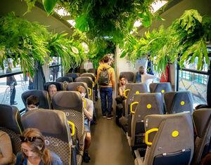 عکس/ قطاری با پوشش گیاهی