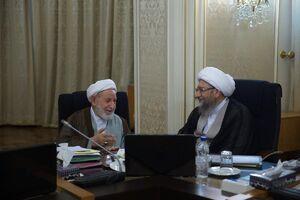 دیدار آملی لاریجانی و یزدی در جلسه شورای نگهبان +عکس