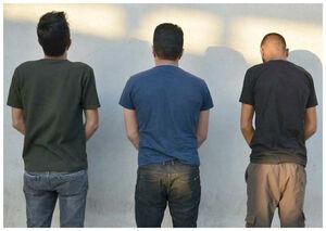 تبهکاریهای ۳ همکلاسی در شبهای تهران