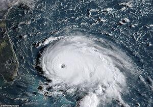 خسارات گسترده طوفان در فلوریدا