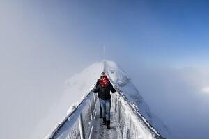 عکس/ ترسناکترین پل جهان