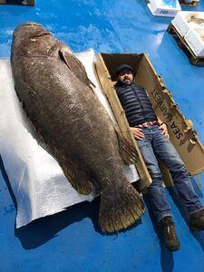 عکس/ صید بزرگترین ماهی خاردار جهان در اقیانوس هند