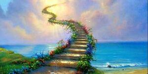 چگونه میتوانیم بهشت را خریداری کنیم؟