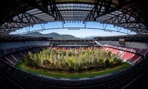 عکس/ تبدیل استادیوم فوتبال به جنگل!