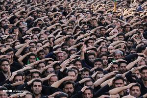فیلم/ عشق به امام حسین در میان اهلسنت