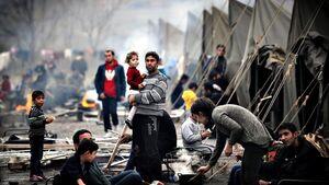 فیلم/ شلیک بیرحمانه و خونسرد به مردم فلسطین