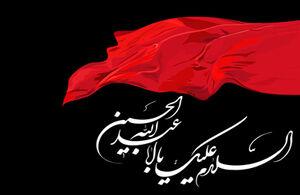 فیلم/ بی ریاترین خادم امام حسین(ع)